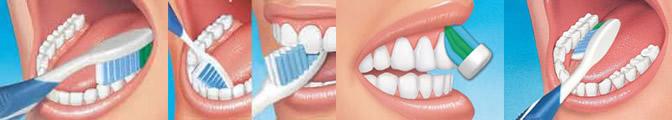 Как чистить зубы: основные рекомендации